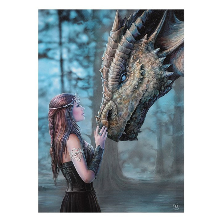 Canvas 50x70cm  - Once Upon a Time - Anne Stokes