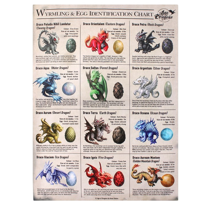 Canvas 50x70cm  - Wyrmling and Egg Identification Chart - Anne Stokes