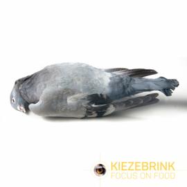 duif per stuk