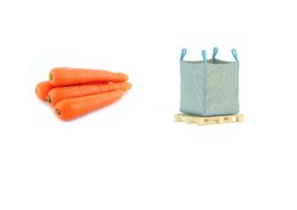 ORGANIC Carrots orange NL 1100 big bag (Enter p/ kg)