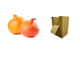 ORGANIC Pumpkin orange NL 1000 kg cardboard box (Enter p/ kg)