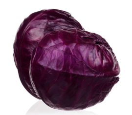 ORGANIC Cabbage Red NL 10 kg net bag (Enter p/ net bag)