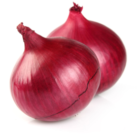 ORGANIC Onions red NL 10 kg net bag (Enter p/ pcs.)