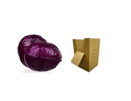 ORGANIC Cabbage red NL 1000 kg cardboard box (Enter p/ kg)
