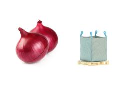 ORGANIC Onions red NL 1150 kg big bag (Enter p/ Kg)
