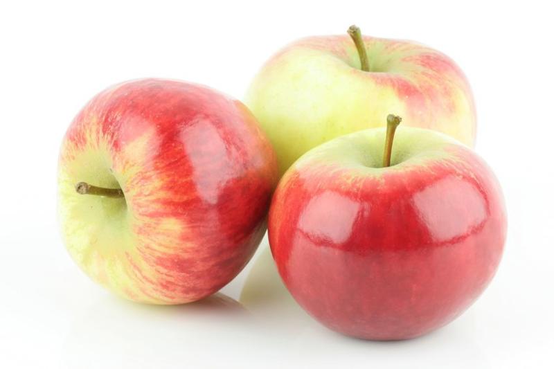 BIO Äpfel Elstar NL 11 Kg Karton (Eingabe p/ St.)