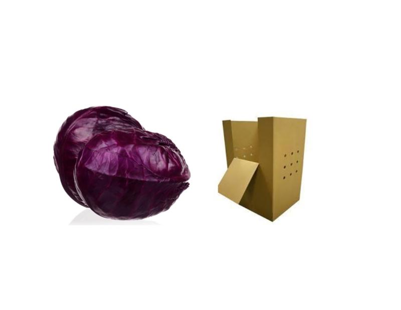 BIO Kohl rot NL im 1000 Kg Gross-Karton (Eingabe p/ Kg)