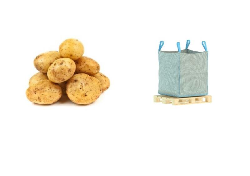 BIO Kartoffeln NL 1250 Kg Big Bag (Eingabe p/ Kg)