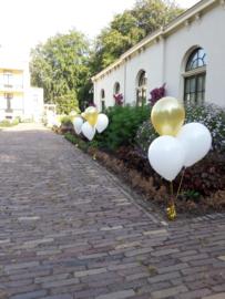 Tros van 3 helium ballonnen inclusief gewichtje