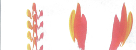 Effect penseel, kroonvorm