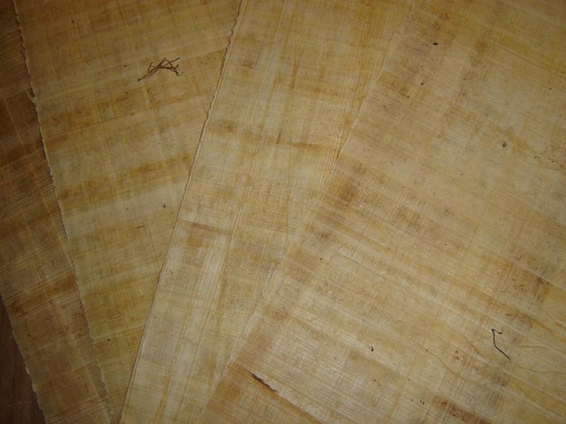 Papyrus.
