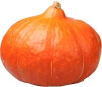 Pompoen oranje MIDDEL | 1 st.