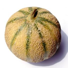 Meloen Charentais