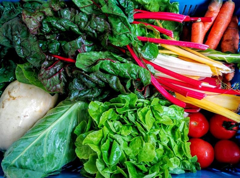 Groentepakket Middel