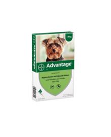 Advantage Hond tot 4kg