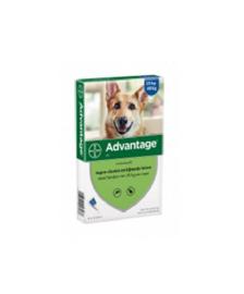 Advantage Hond vanaf 25kg