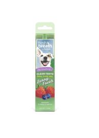 Fresh Breath OralCareGel Berry 59 ml