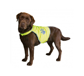 Veiligheidshesje voor honden XS