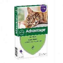 Advantage Kat 80 - vanaf 4kg
