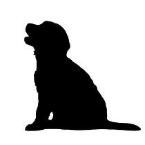 Dogmeat Compleet Pup 1-6 maanden 200gr