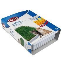 Trixi Soft Gras 100gr (kattengras)