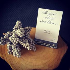 Kraskaart - ''Elk groot verhaal start klein'' - zus
