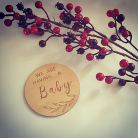 Houten bordje - ''we are having a baby''