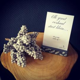 Kraskaart ''Elk groot verhaal start klein'' - moeder