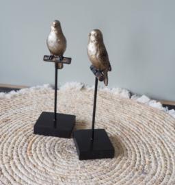 """Sculptuur """"Vogel op tak"""""""