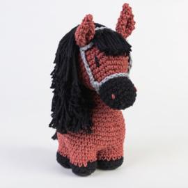 DIY  Pony Sienna