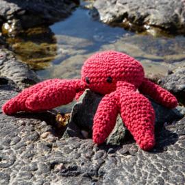 DIY Cool Crab