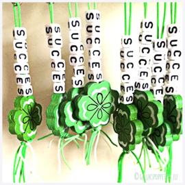 Sleutelhanger Succes per 25 stuks