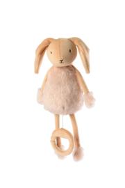 Valentin het konijntje