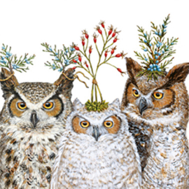 Holiday Hoot 33 x 33cm