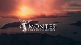 Mechuque Zuid-Chili Montes, een nieuwe wijnstreek!