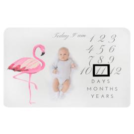 Mijlpaaldeken Flamingo
