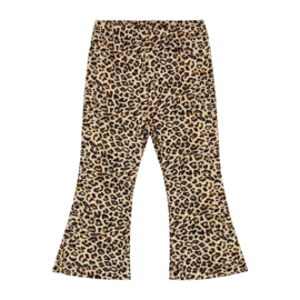 Baby Flair Pants Leopard
