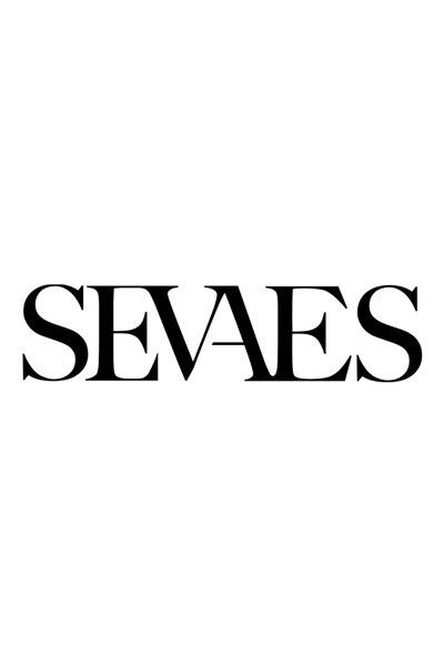 SEVAES-logo-over-ons.jpg