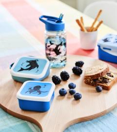 lunchboxen set sea animails