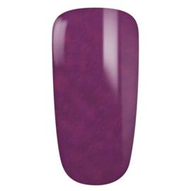 Arabic Violet