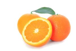 Sinaasappel-hand-Navels  Groot --Per 5 Stuks!