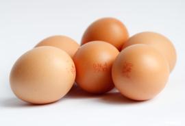 Eieren - 6 stuks