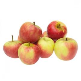 Elstar appelen Per stuk!
