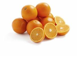 Perssinaasappels - 10 stuks!