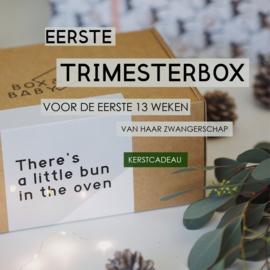 Eerste Trimesterbox