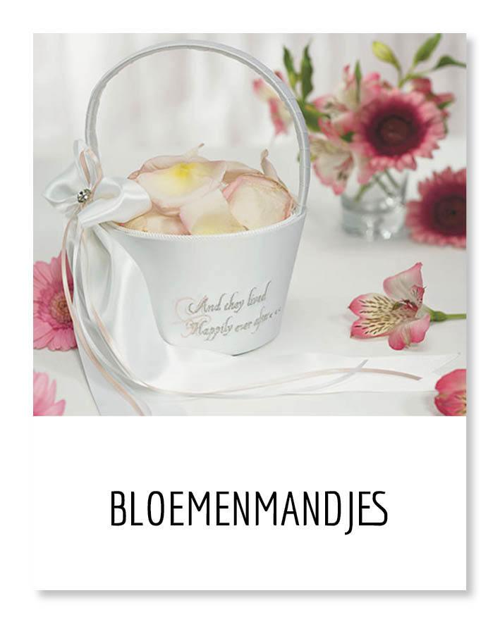 https://www.mijnwebwinkel.nl/winkel/eppi/c-4343055/bloemenmandjes/