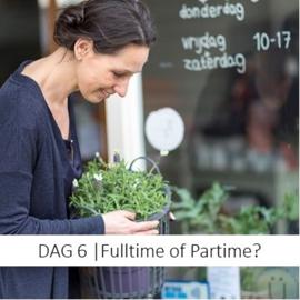 DAG 6 | Fulltime of parttime?