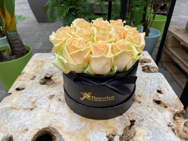 Flowerbox maat L zalmkleurige rozen