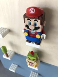40 x 50 Mario