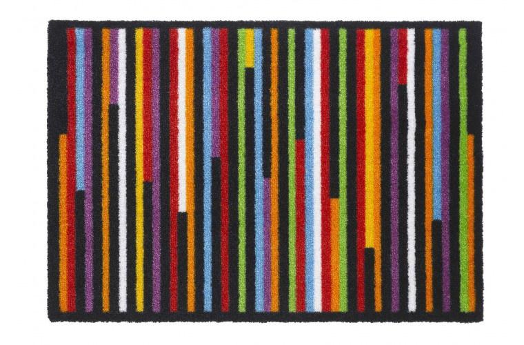 Multicolor Linea